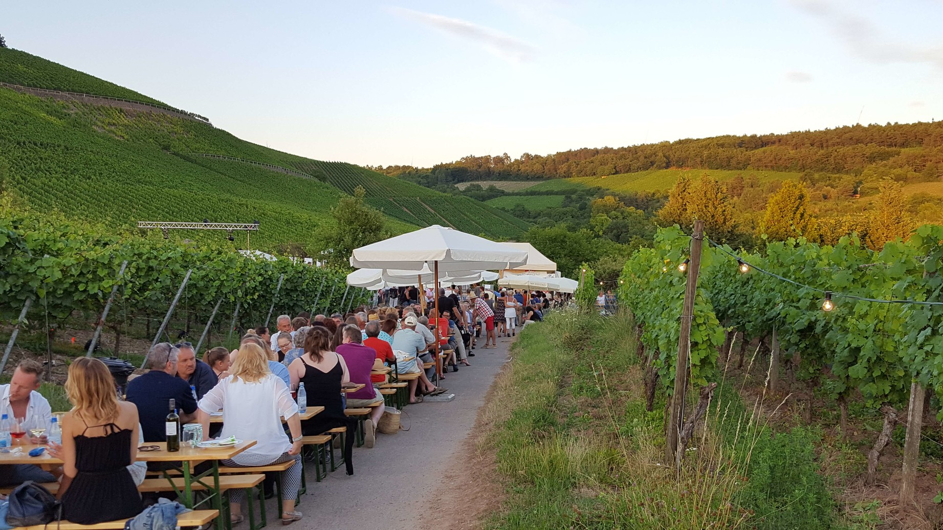 Nacht der Verführung – Weinfest in den Weinbergen